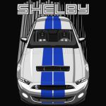 Shelby GT500 S197 - Blue lines
