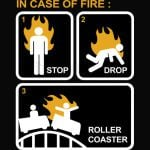 Case Of Fire Roller Coaster