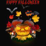 Happy Halloween Pumpkin Skulls bats