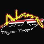Alamo Pigeon Forge