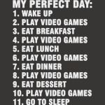 My Perfect Day Sleep Eat Play Video Games