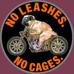NO LEASHES NO