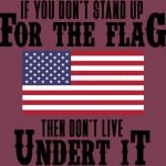 IF YOU DON'T STAND UP FOR THE FLAG THEN DON'T LIVE UNDER IT