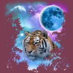 Tiger MidNight Forest