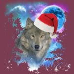 Santa Hat Grey Timber Wolf MidNight Forest