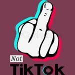 TikTok Haters 2