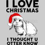Christmas-Otter