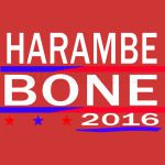 7a0e094396 HARAMBE AND KEN BONE 2016 Toddler T-shirt - Customon