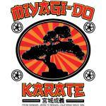 Karate Kid - Mr Miyagi Do