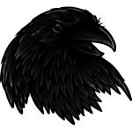 Rise Of The Raven T-Shirt